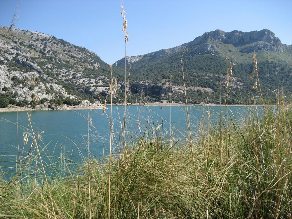 Mallorca 08.2008