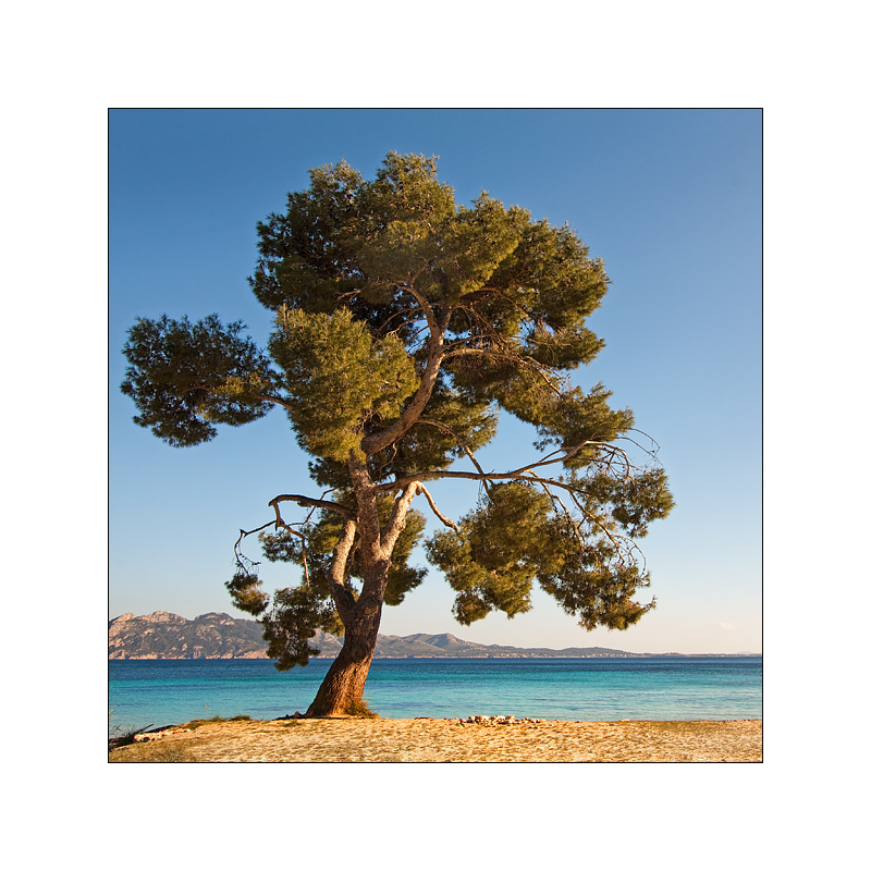 [ Mallorca² - 10 ]