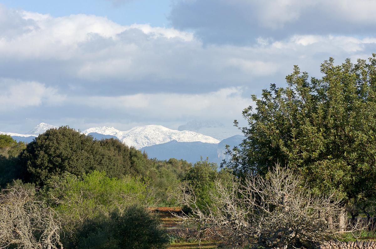 Mallorca, 14. März 2013