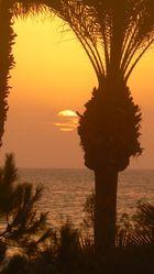 Mallorca 2006