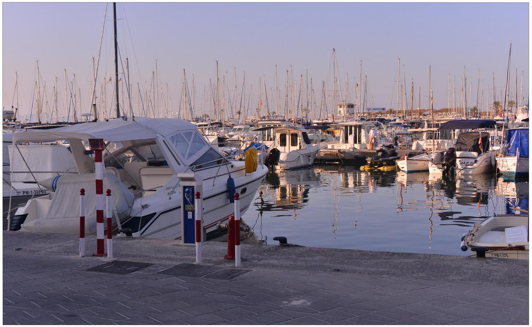 Mallorca 2012, Puerto de Alcúdia, el puerto