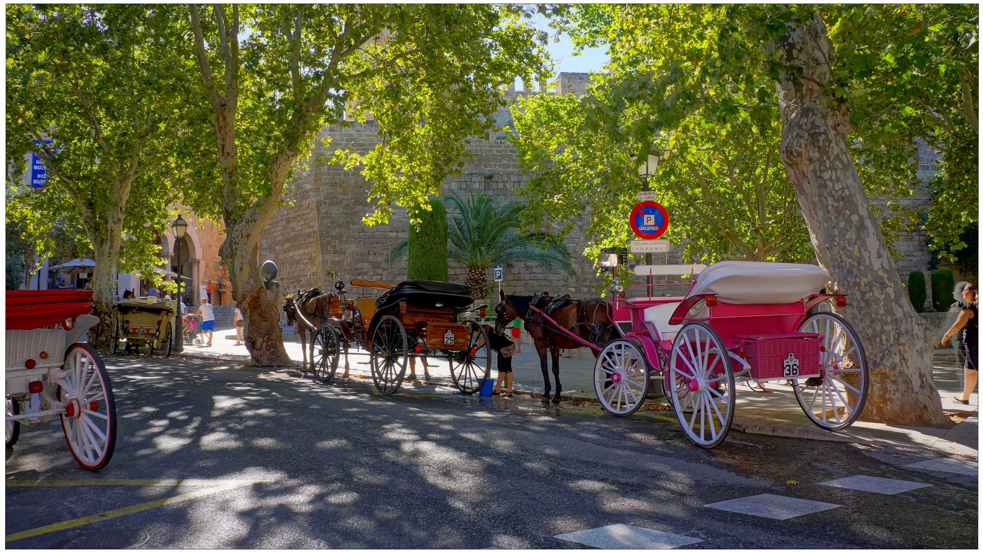 Mallorca 2013, Palma