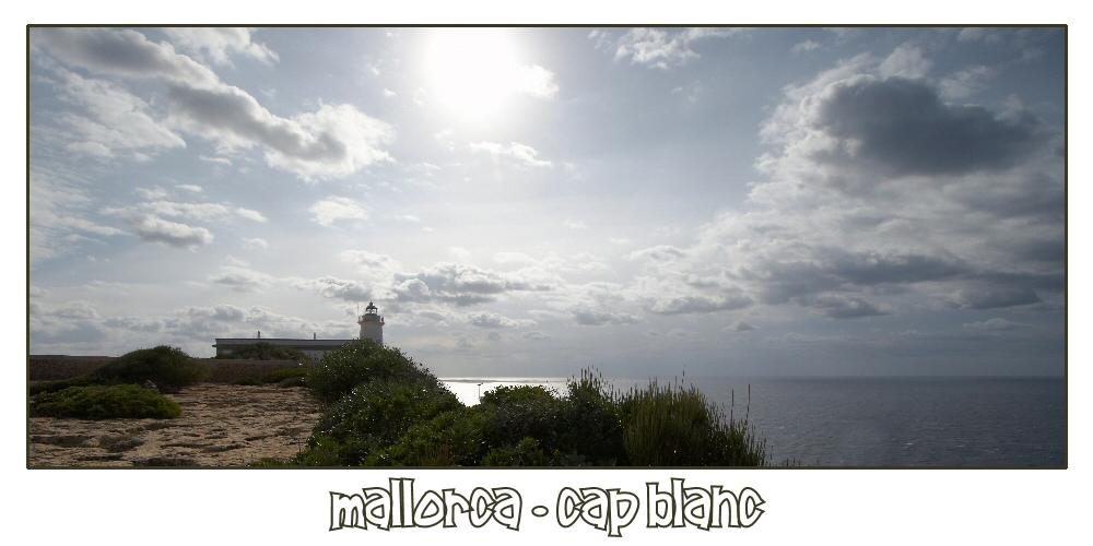 Mallorca Fotoreise März 2008