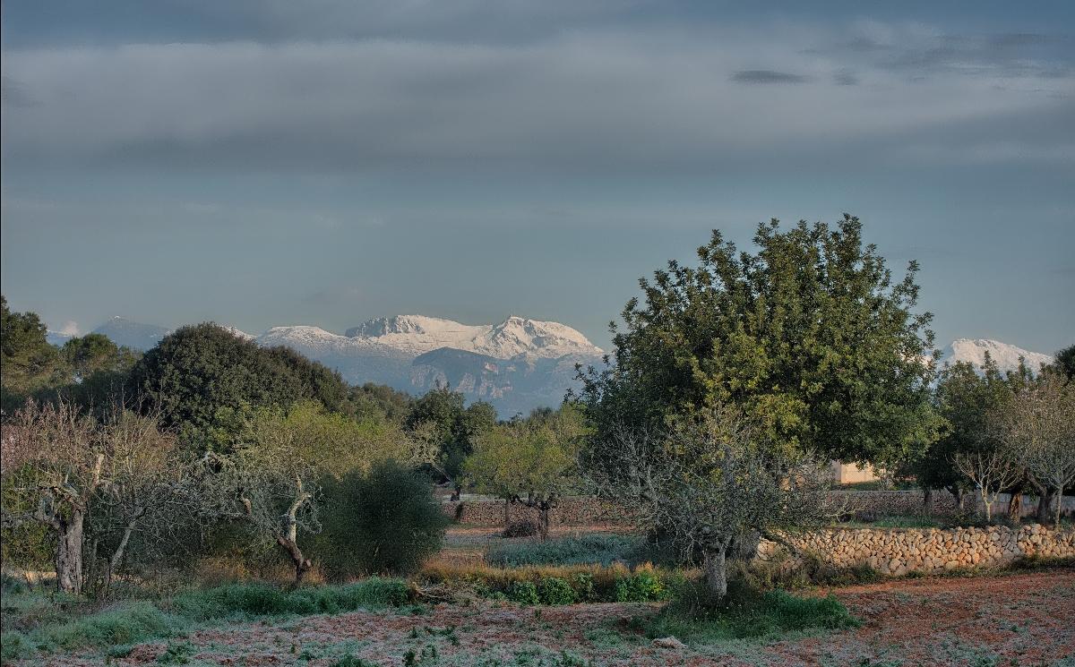 Mallorca heute Morgen