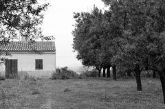 Mallorca jenseits der Balnearios 5