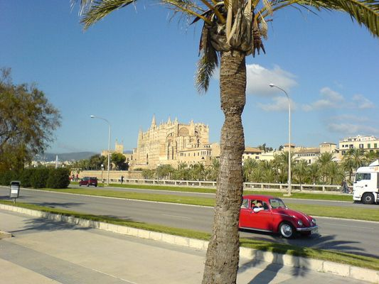 Mallorca - Palma - Kathetrale