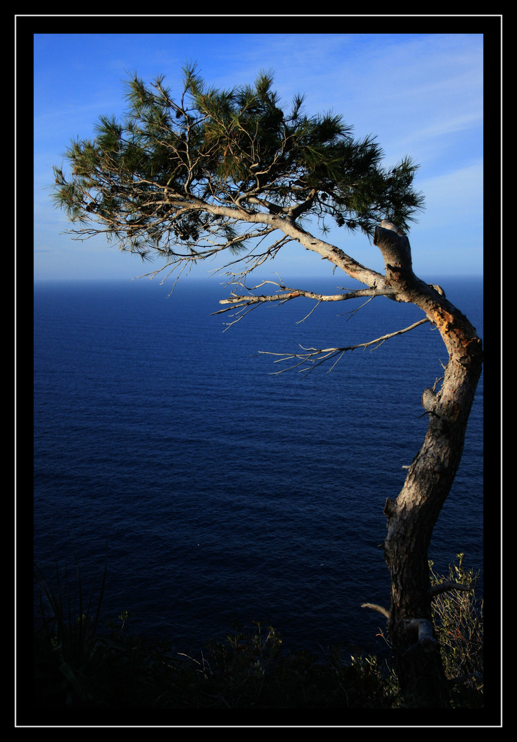 *Mallorca2011*