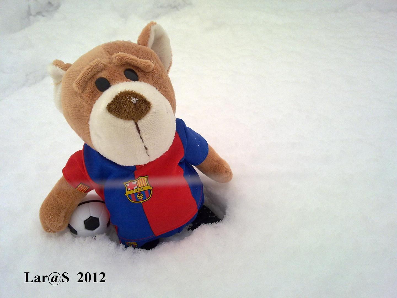 Mamá ¿puedo salir a jugar con la nieve?
