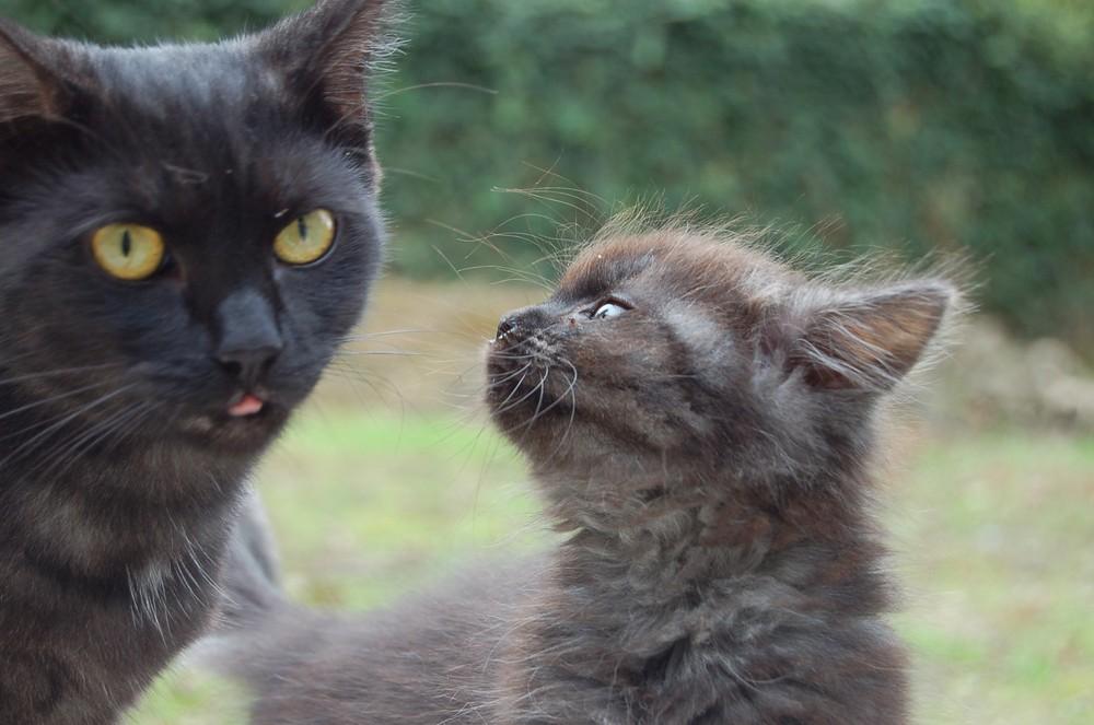 Mama, warum guckst du denn so doof???
