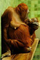 Maman & son Bébé (25.04.2010)