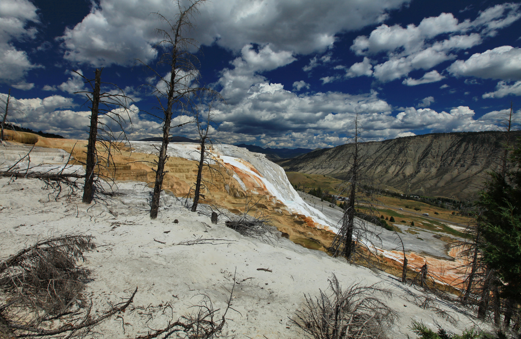 Mammoth Hot Springs 6