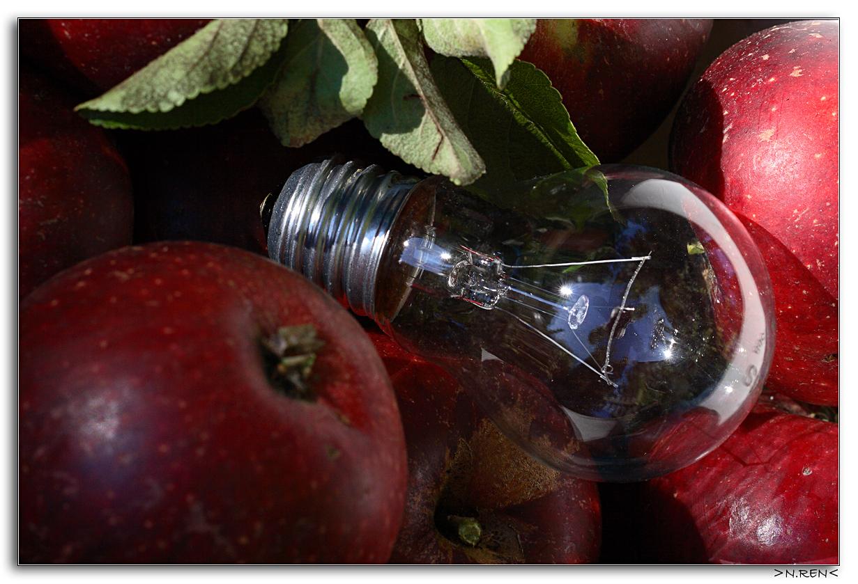 Man darf nicht Äpfel mit Birnen vergleichen.