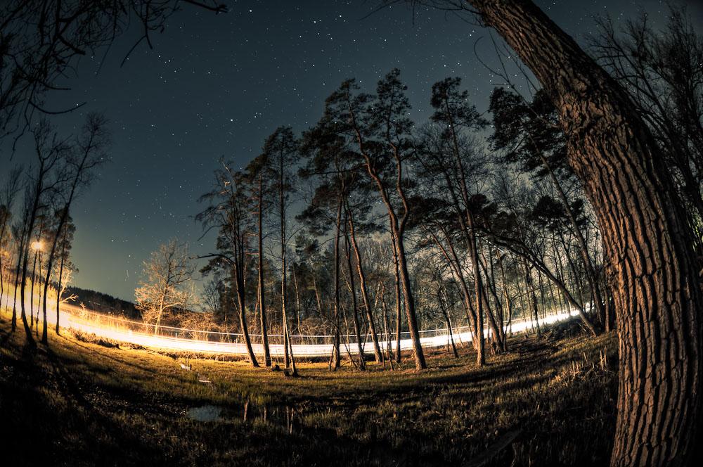 Man fährt nachts durchs Moor
