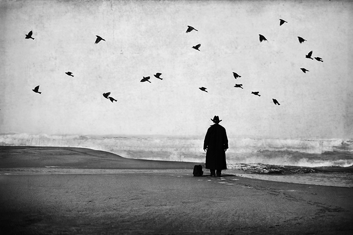 Man in Black at the Beach with Birds