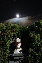 Man on the Moon II