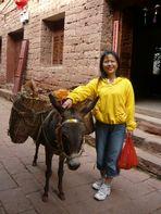 Manche Chinesinnen koennen Maenner in Lastesel verwandeln