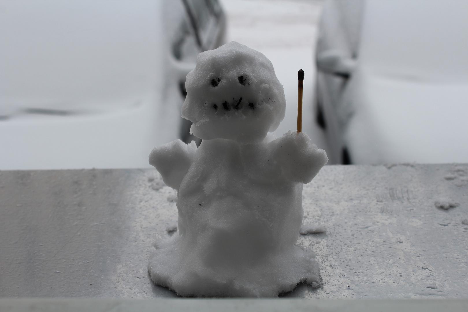 Manchmal wird aus Schnee ein kleines Kunstwerk :)!