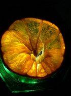 mandarine auf grün