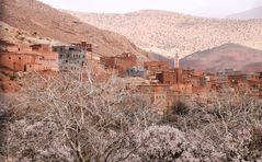 Mandelbluete Berge Kasbah maroc