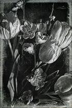Mandeln und Tulpen