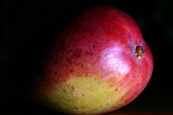 Mango vom Blitz getroffen