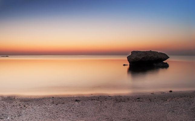 """Mangrove Bay in ihrem """"weichen Element"""""""