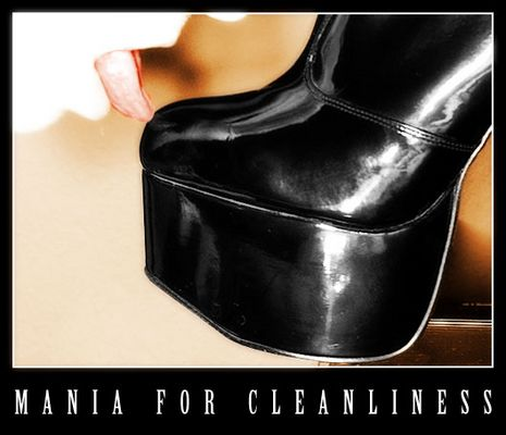 mania for cleanliness