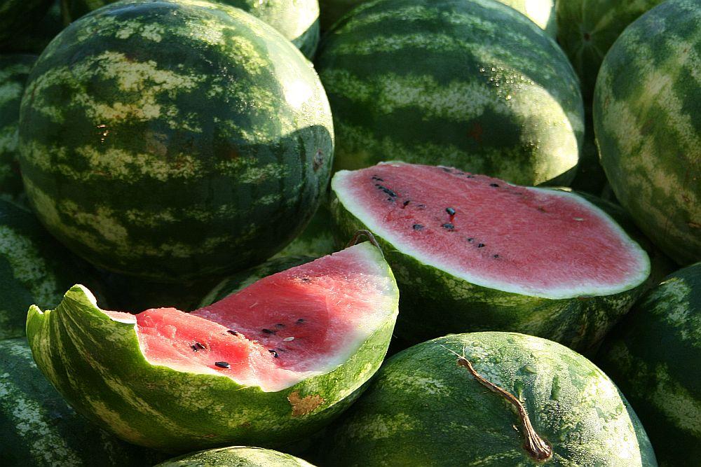 Mann, hat die ein paar Melonen..... Reload