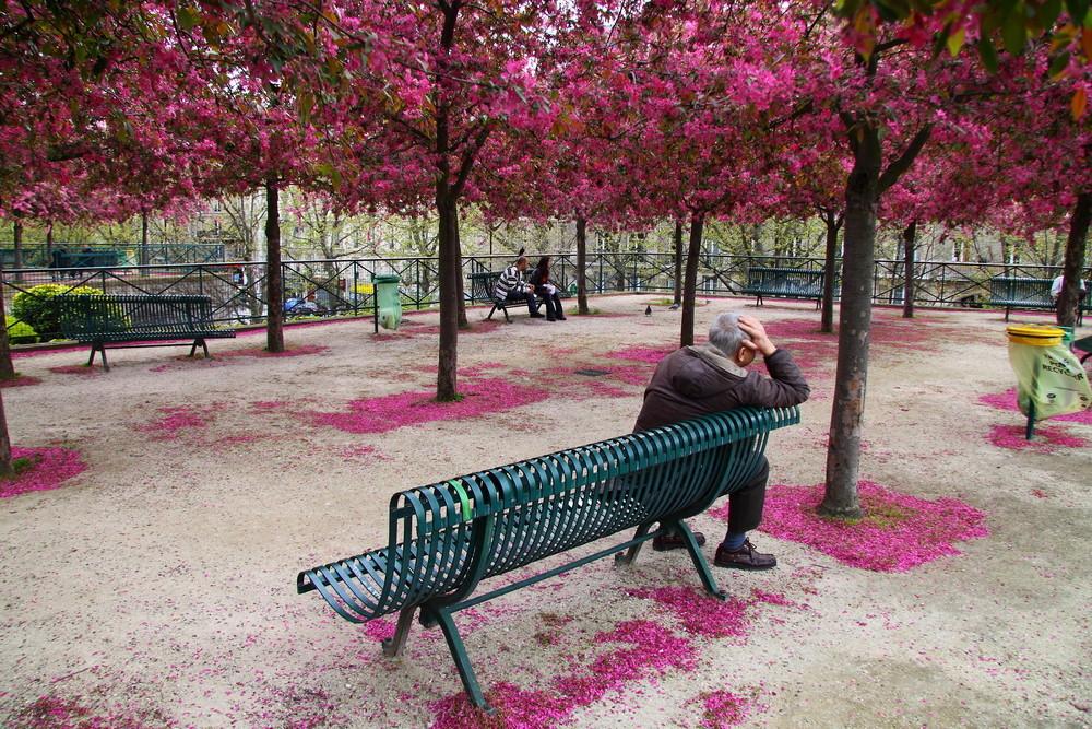 Mann im Park - Paris