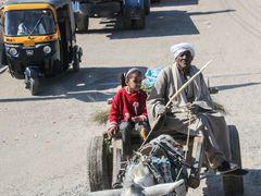 Mann Kind Karren street egypt