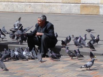 Mann mit Taube