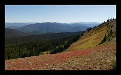 [ Manning Provincial Park ]