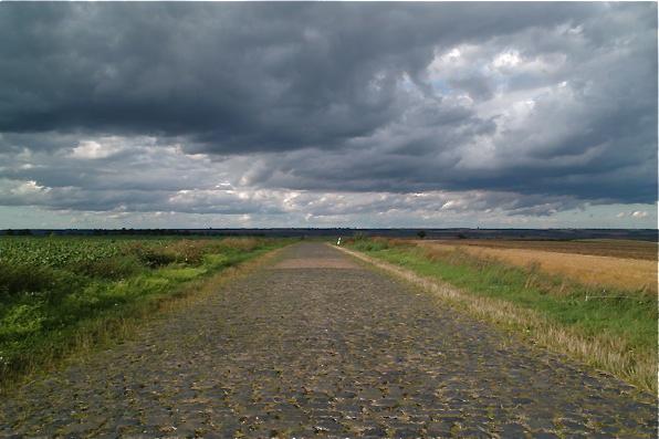 Mansfelder Land 2009