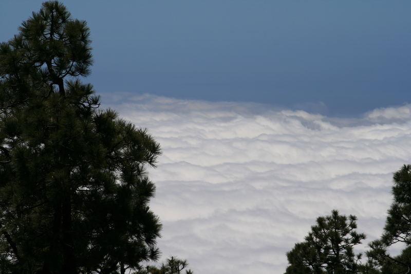 manto de nuves
