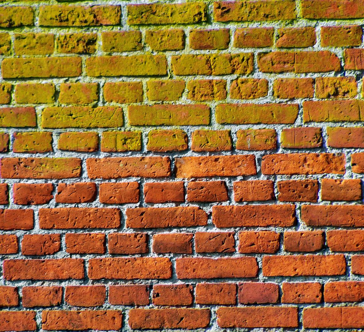many bricks in the wall