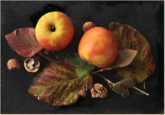 Manzanas sobre hojas