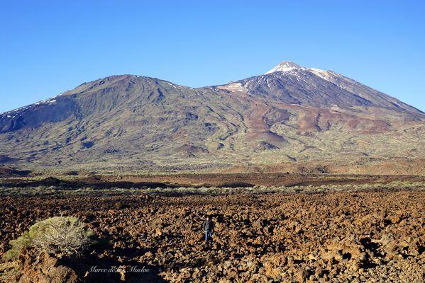 ...Mar de lava Teide...