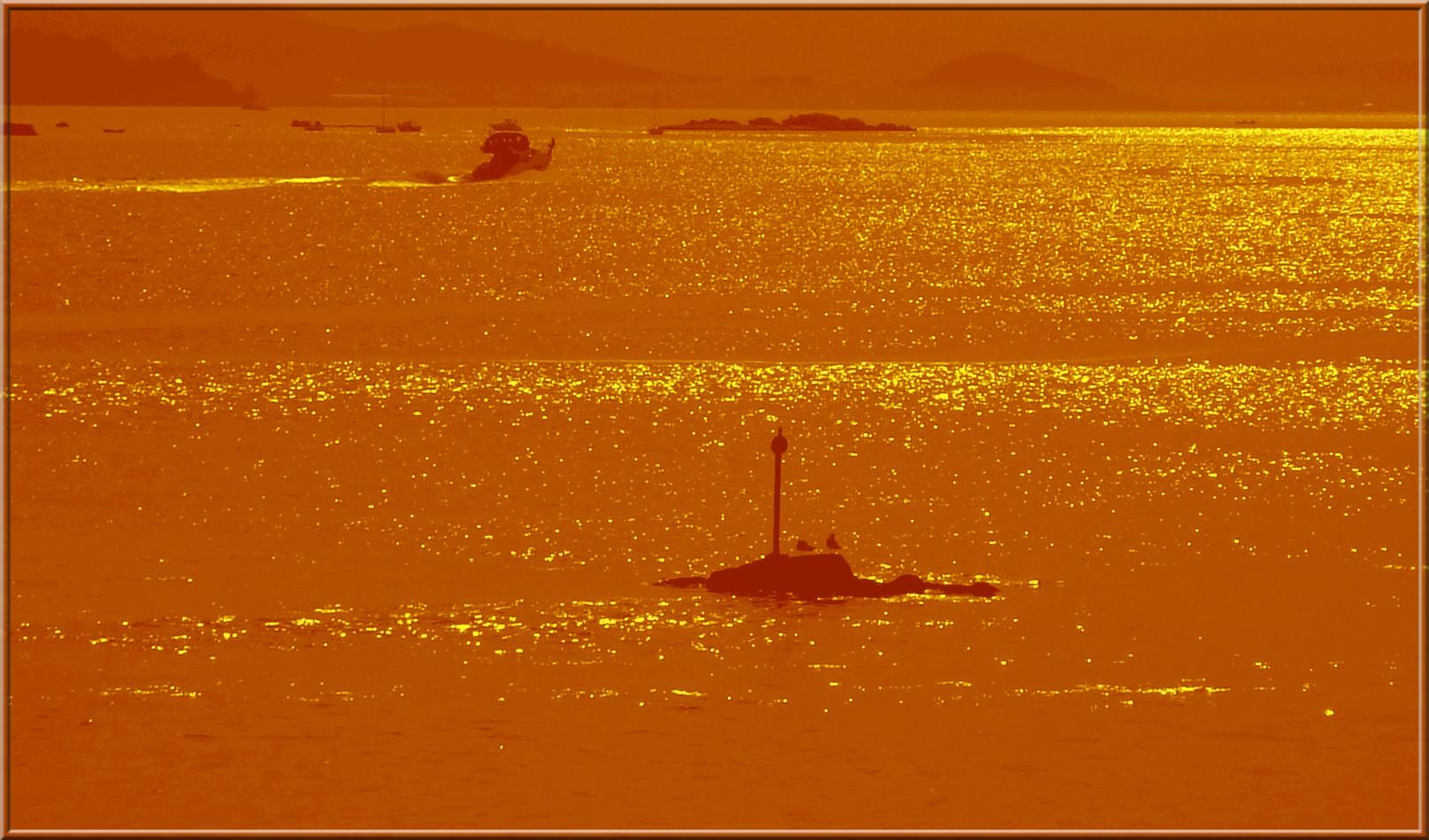 Mar dourado