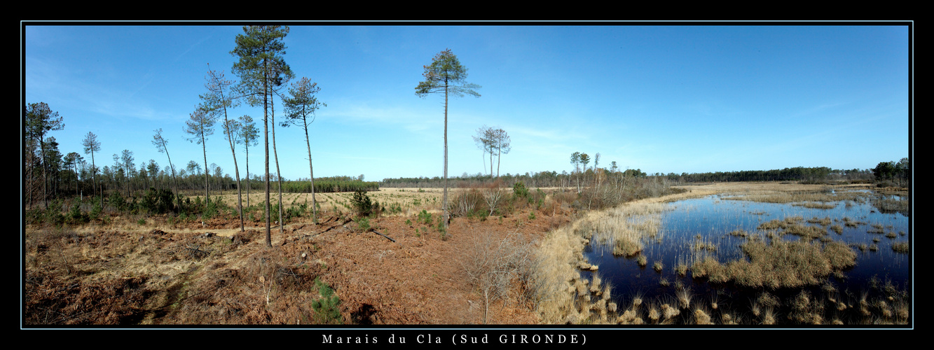 Marais du Cla ( Sud GIRONDE )