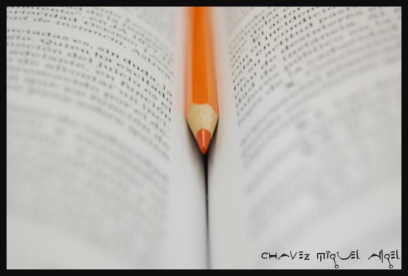 Marcando una pagina