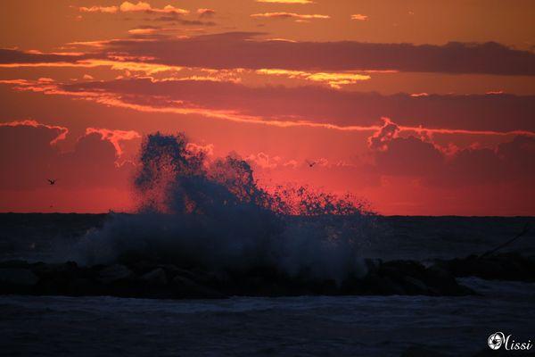 ... mare agiato prima del sorgere del sole