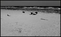 Mare d'inverno 2