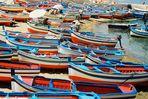 marea di barche