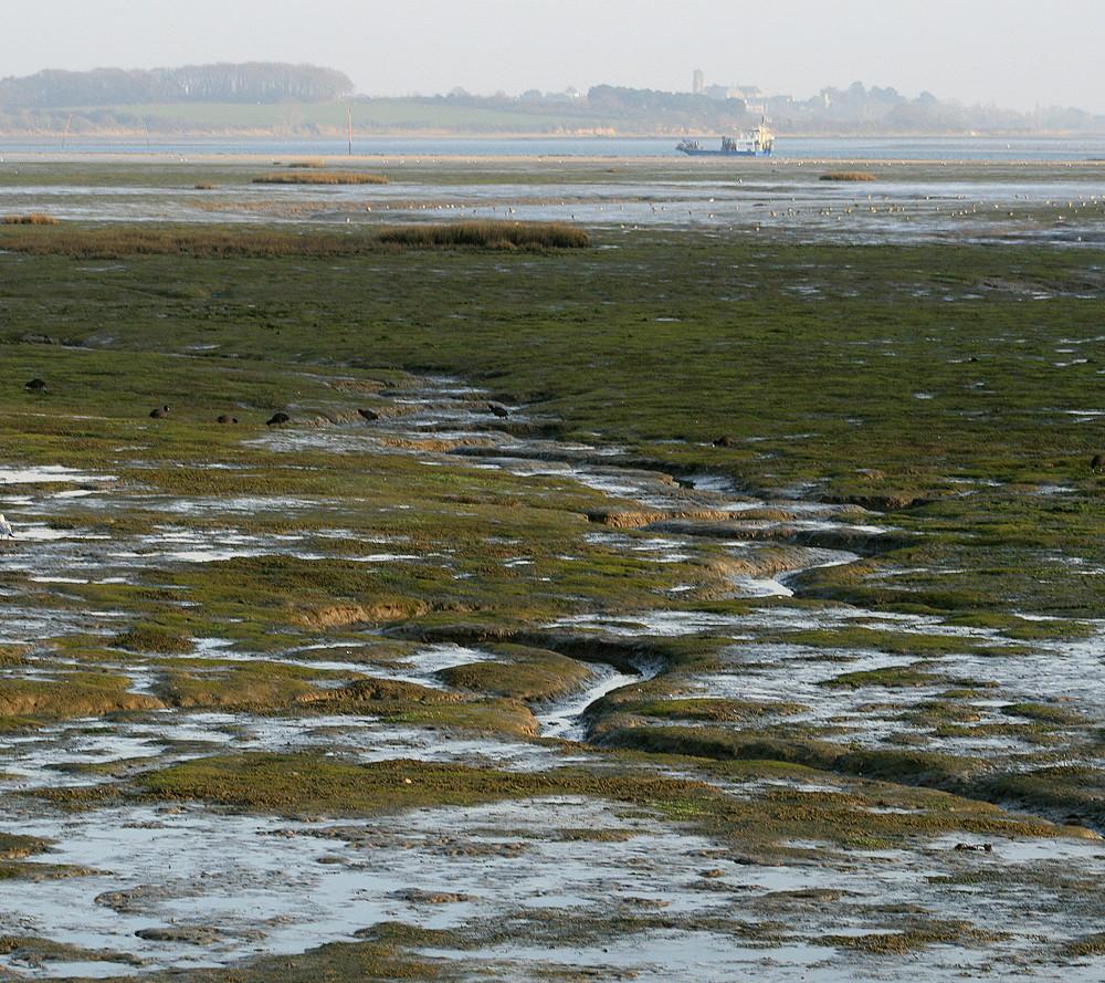 Marée basse sur le Golfe du Morbihan
