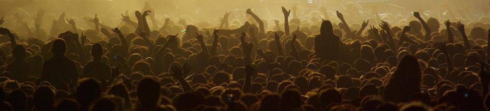 Marée humaine lors d'un concert d'Iggy Pop and the Stooges.