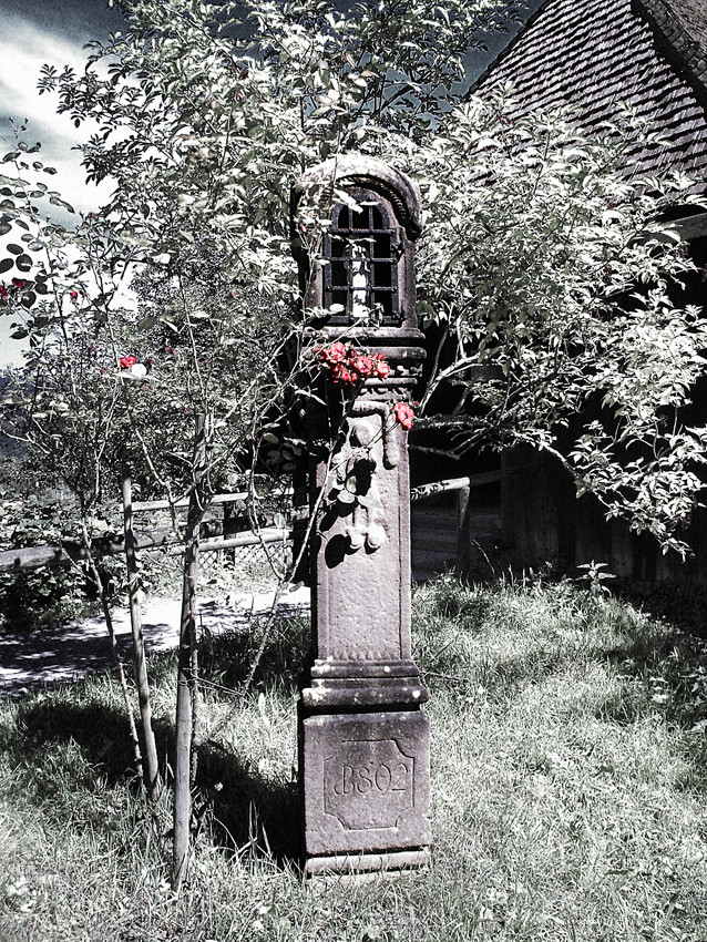 Maria hinter Rosen