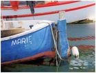 Marie au port