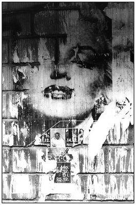 Marilyn lebt ...