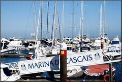 Marina di Cascais