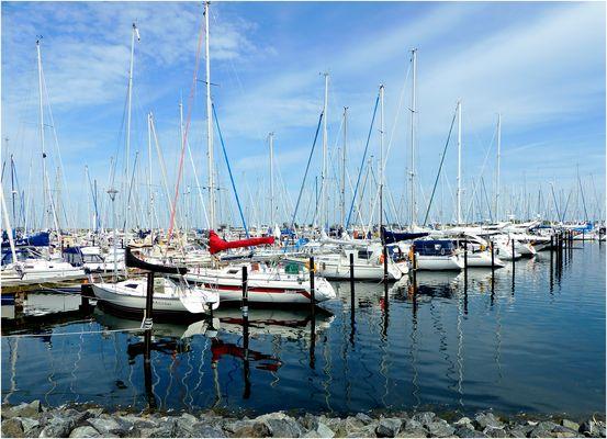 Marina Heiligenhafen - Schlangenlinien im Wasser und schöne Bootee